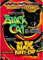 Jaquette BLACK CAT/THE FAT BLACK PUSSYCAT (SPECIAL EDITION)