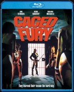 Jaquette Caged Fury