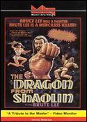 Jaquette DRAGON FROM SHAOLIN