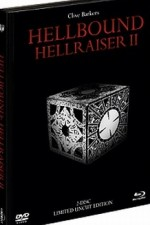 Jaquette Hellraiser 2 (DVD+Blu-Ray) - Black Edition