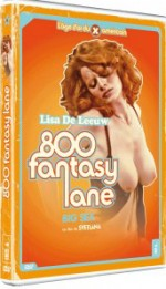 Jaquette L'Âge D'or du X Américain : 800 Fantasy lane EPUISE/OUT OF PRINT