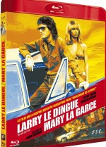 Jaquette Larry le dingue, Mary la garce