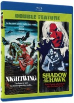 Jaquette Nightwing / Shadow of the Hawk