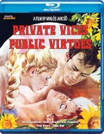 Jaquette Private Vices Public Virtues