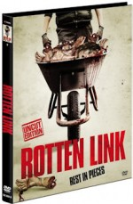 Jaquette Rotten Link (Cover A)