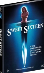 Jaquette Sweet Sixteen (DVD + BLURAY)