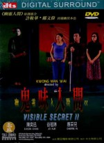 Jaquette VISIBLE SECRET 2