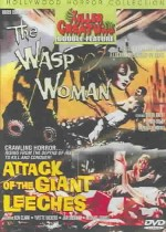Jaquette WASP WOMAN/ATTACK OF THE GIANT LEECHES