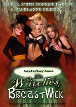 Jaquette Witches of Breastwick