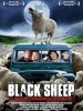 Pochette Black Sheep - DVD  Zone 2